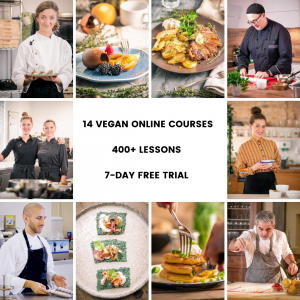 the best vegan online cooking courses veecoco